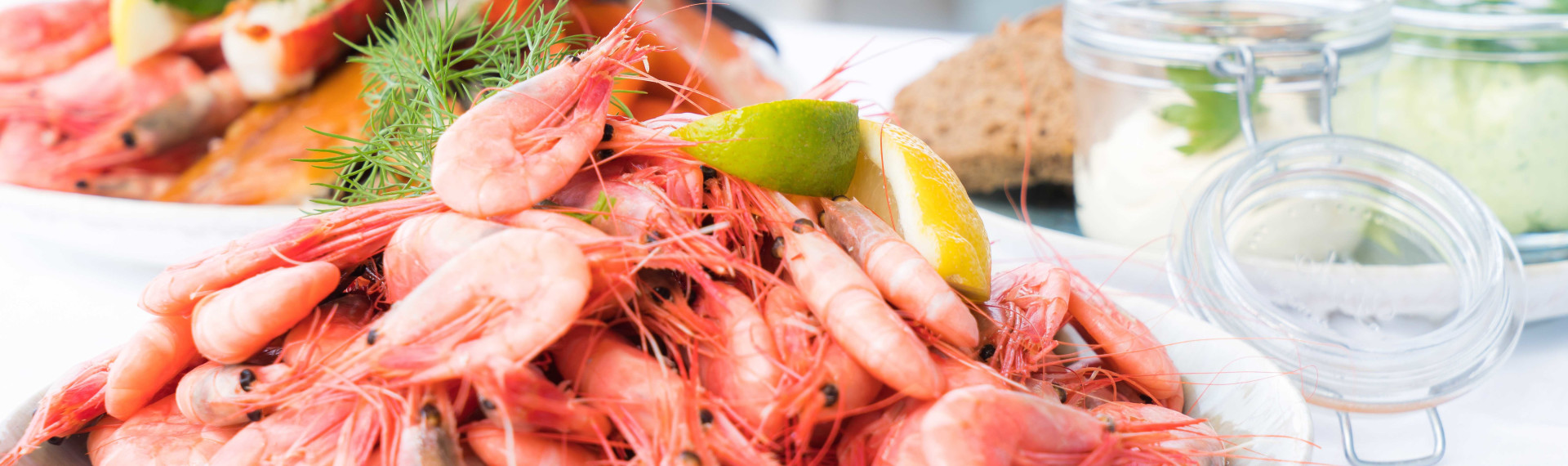 Shrimps STOCK