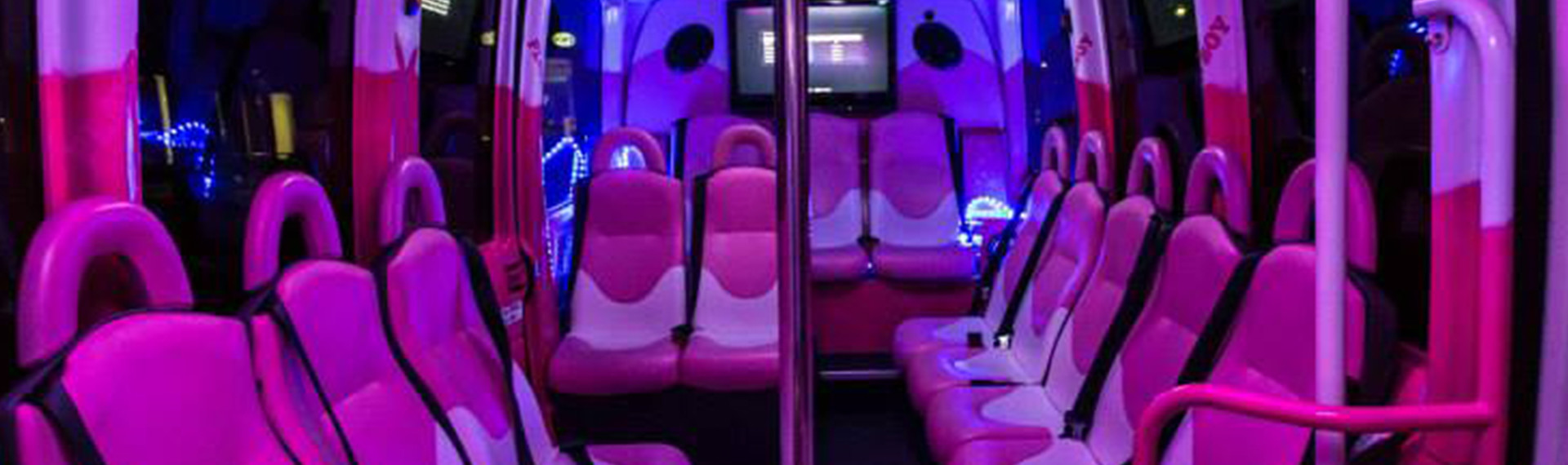 Small Pink Party Bus 16 Persons Hamburg