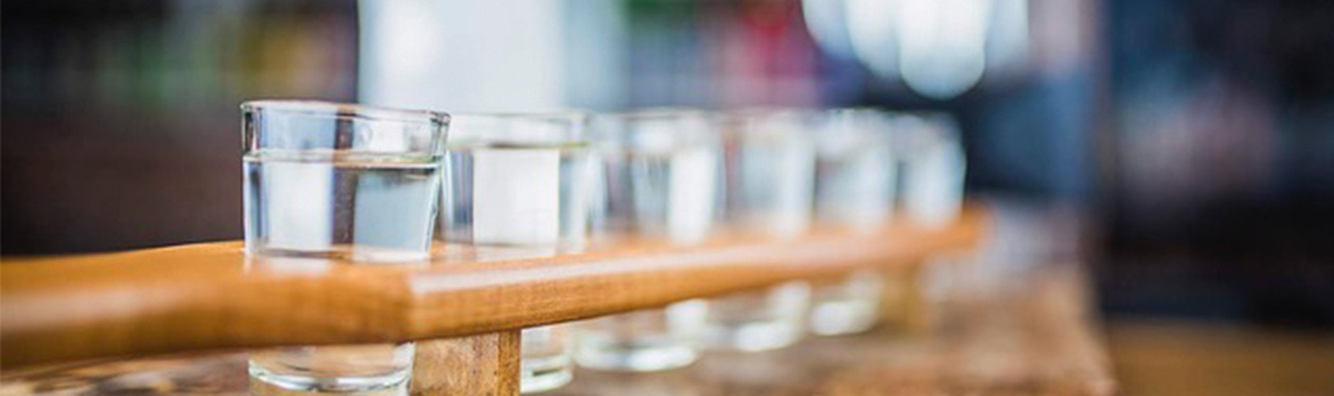 Vodka Tasting Gdansk