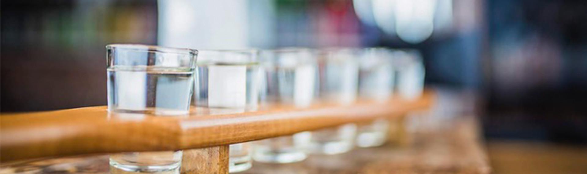 Wodkaverköstigung Warschau